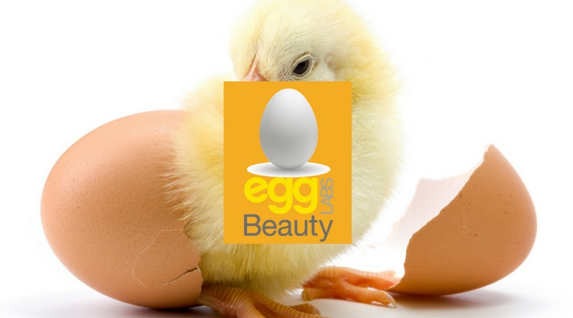 Project: Egg Lab Beauty Labs